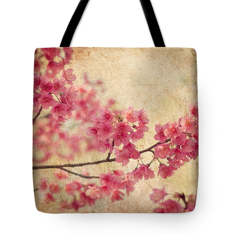 Cherry Blossom Lifestyle Products
