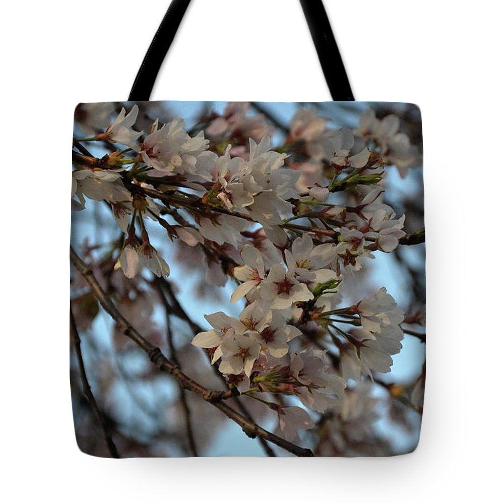 Flower Tote Bag featuring the photograph Cherry Blossom by Kamakshi Kumar