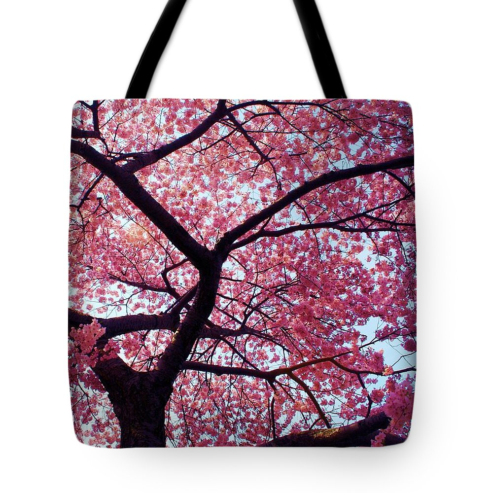 Cherry Tree Tote Bag featuring the photograph Cherry Tree by Mitch Cat