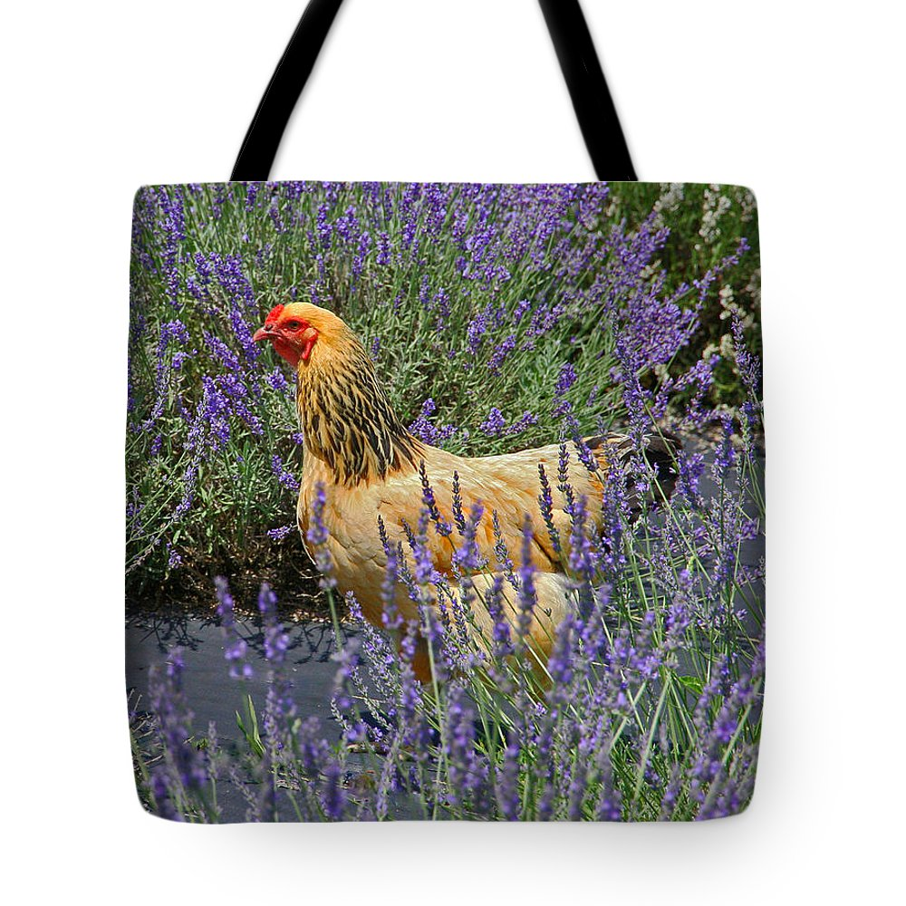 White Oak Lavender Farm Tote Bag featuring the photograph Chicken In The Lavender by Suzanne Stout