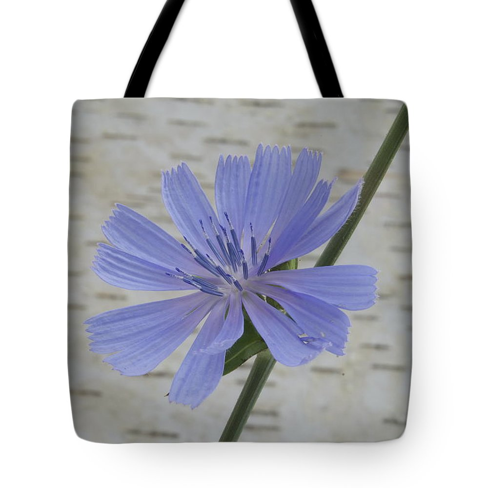 Backdrop Tote Bag featuring the photograph Chicory by Michael Peychich