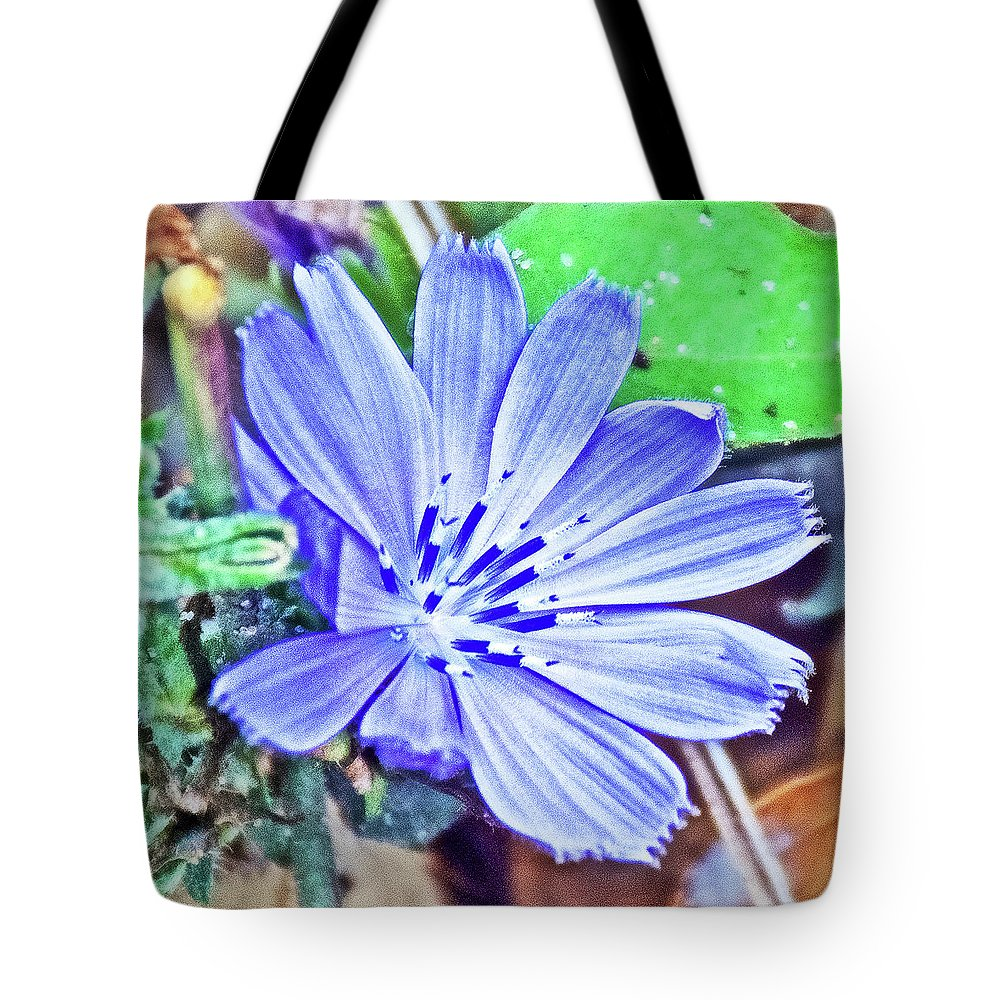 Chicory On Trail To North Beach Park In Ottawa County Tote Bag featuring the photograph Chicory On Trail To North Beach Park In Ottawa County, Michigan by Ruth Hager