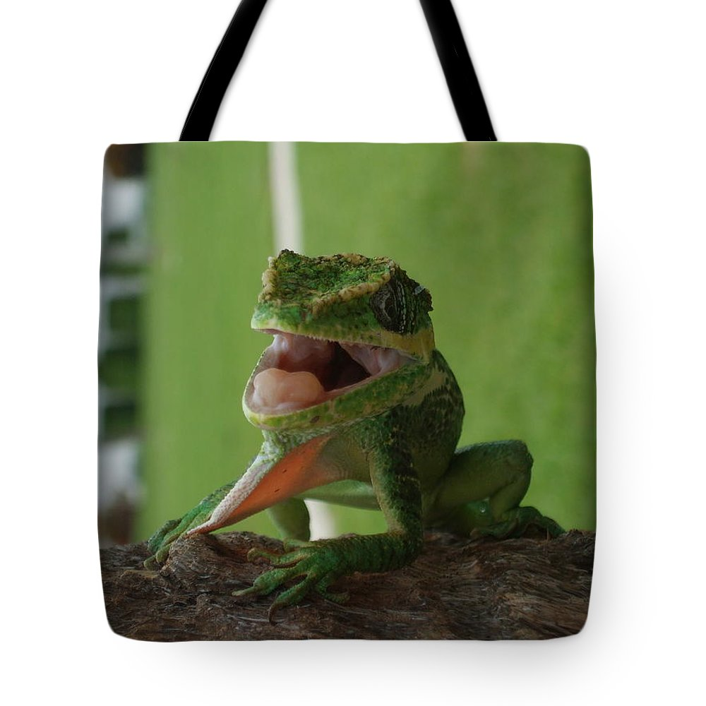 Iguana Tote Bag featuring the photograph Chilling On Wood by Rob Hans