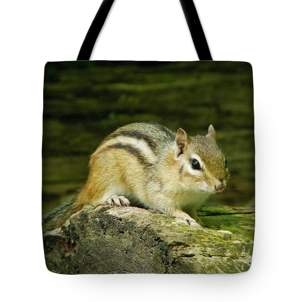Nature Tote Bag featuring the photograph Chipmunk by Peggy King