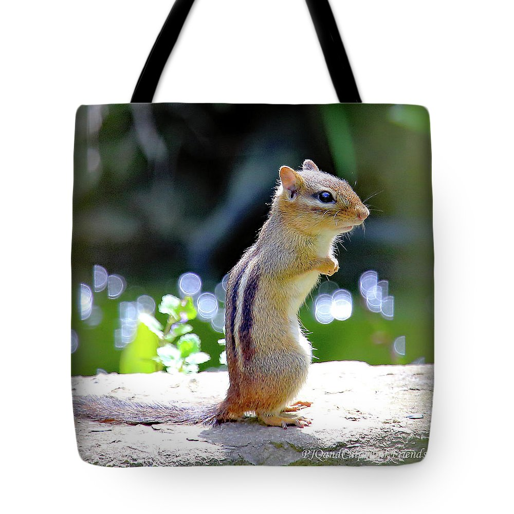 Chipmunk Tote Bag featuring the photograph Chipmunk by PJQandFriends Photography