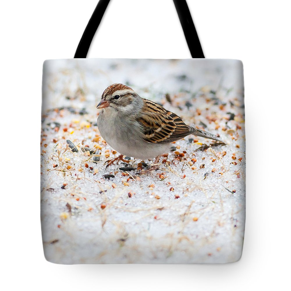 Chipping Sparrow Tote Bag featuring the photograph Chipping Sparrow by Melinda Fawver