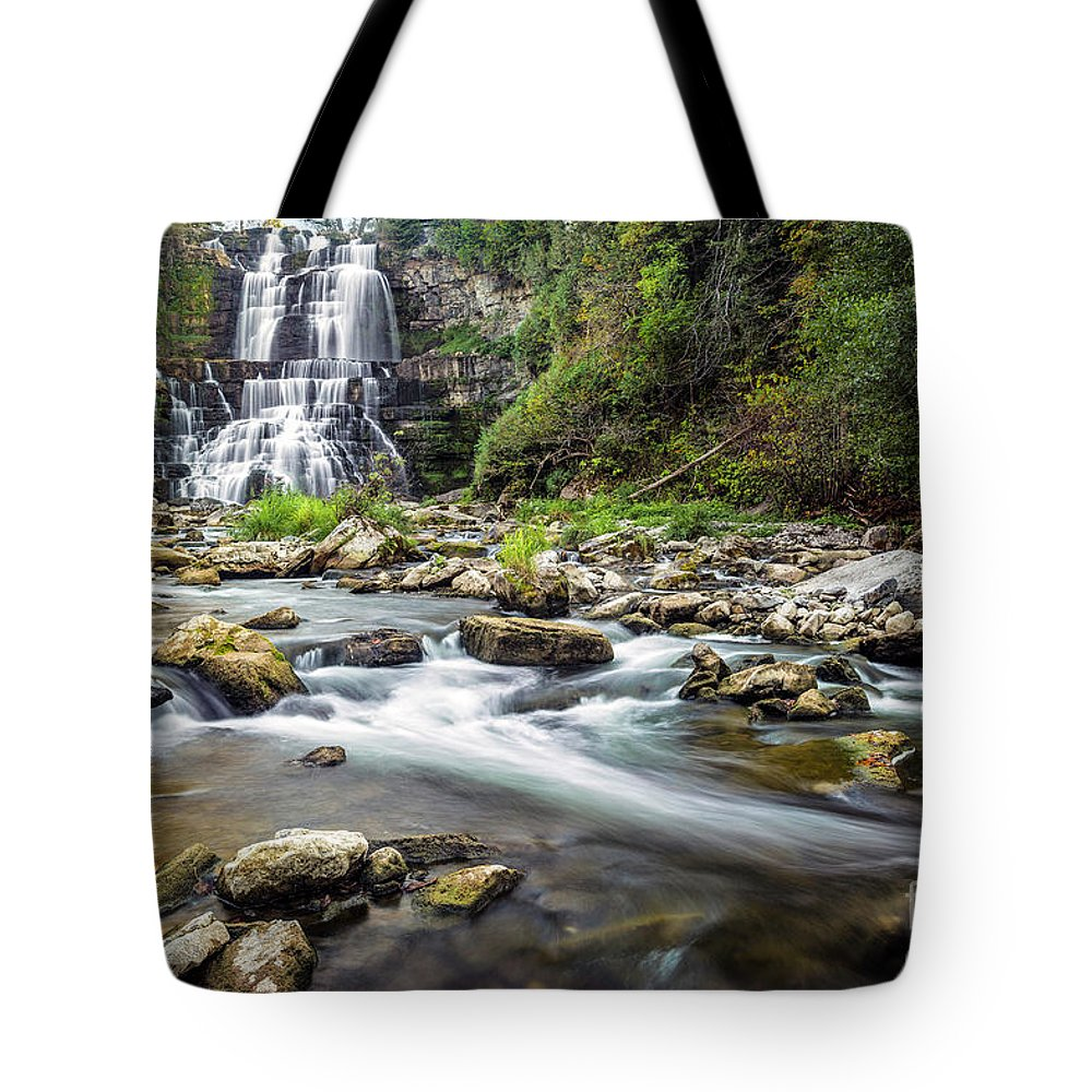 New York Tote Bag featuring the photograph Chittenango Falls by Karen Jorstad