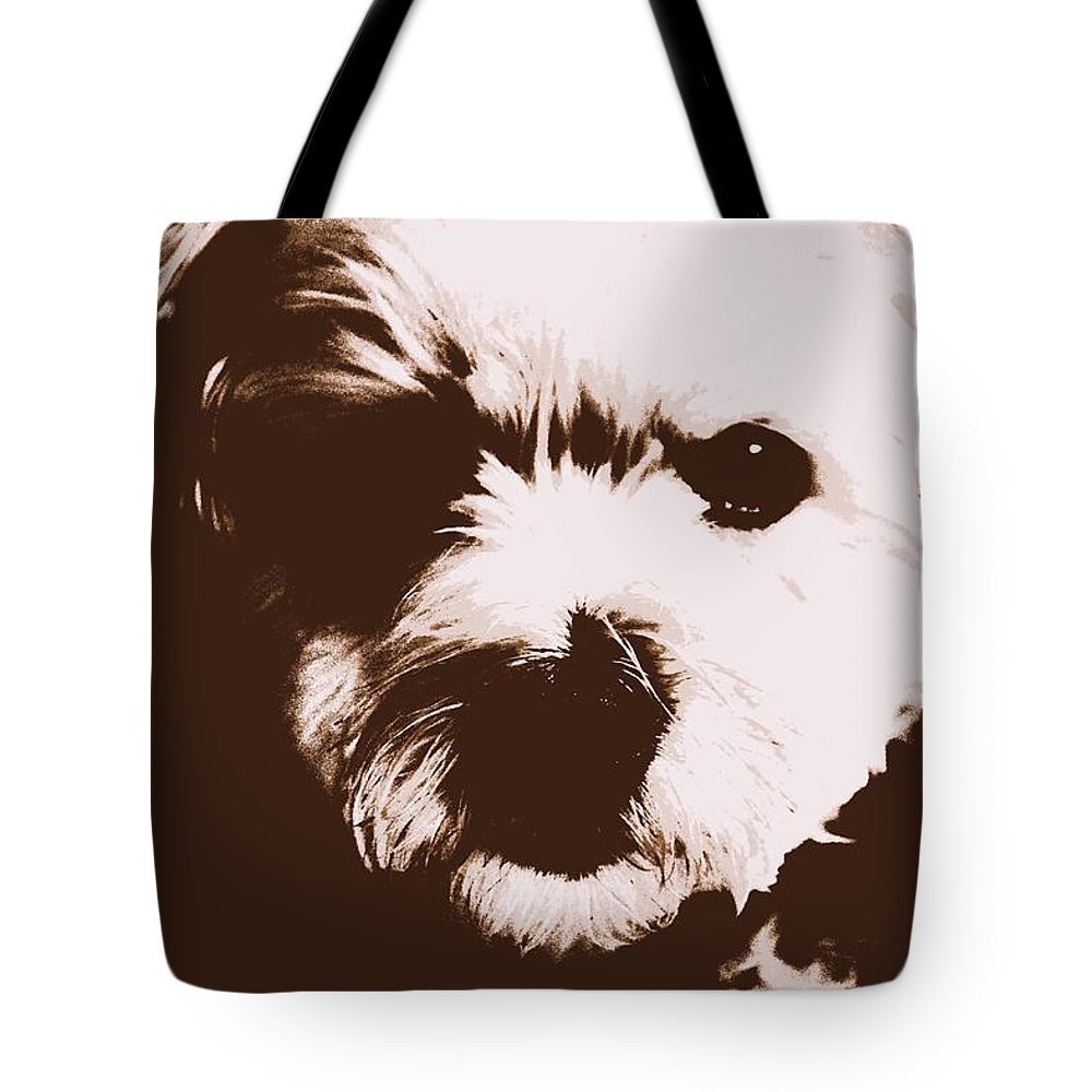 Chocolate Charlie Tote Bag featuring the photograph Chocolate Charlie by Ed Smith