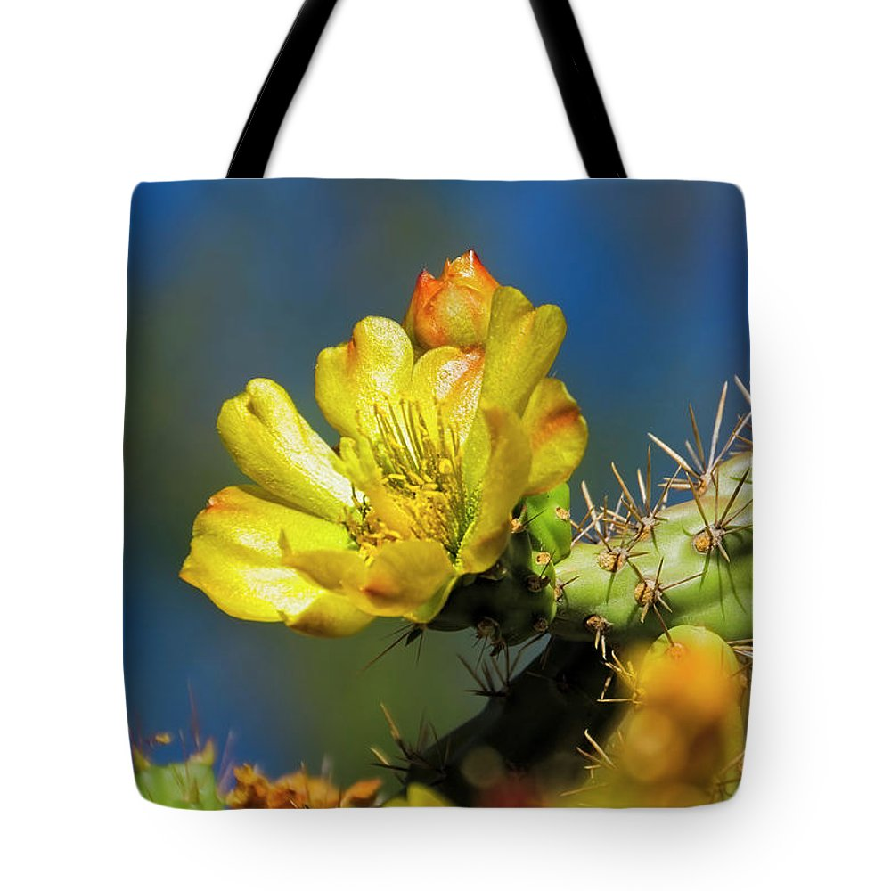 Arizona Tote Bag featuring the photograph Cholla Flower H40 by Mark Myhaver