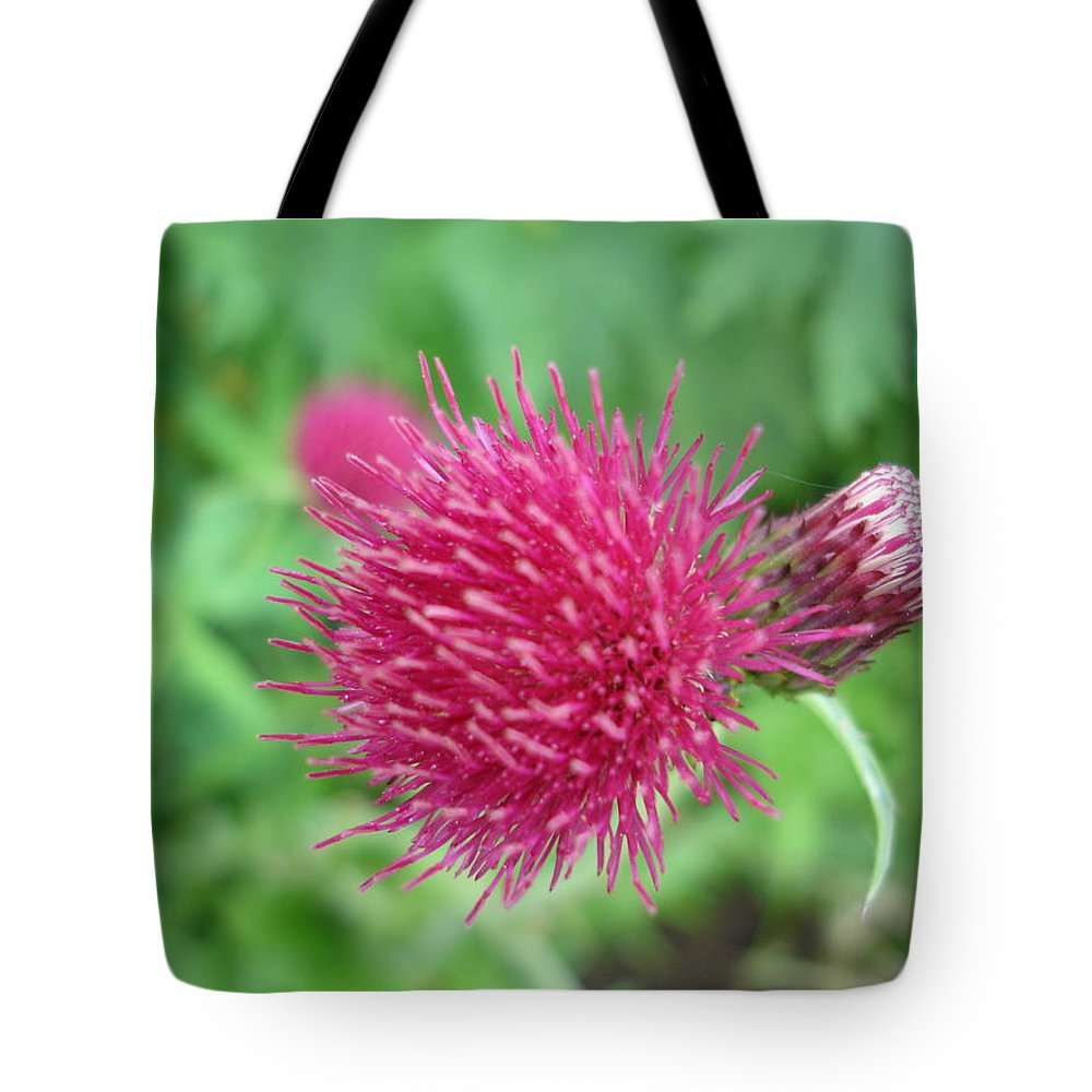 Thistle Tote Bag featuring the photograph Cirsium Burgandy Thistle by Susan Baker