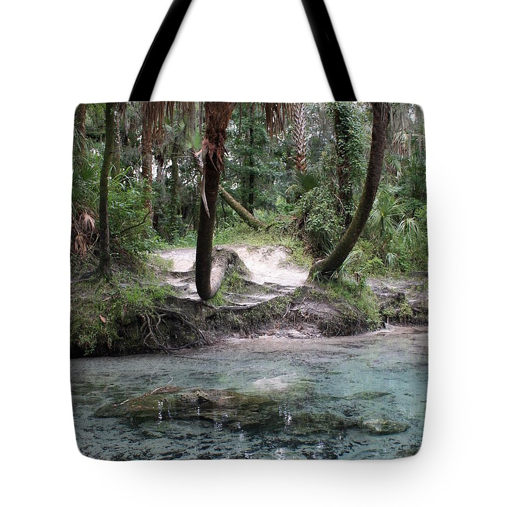 Lithia Springs Tote Bag featuring the photograph Clear Water And Palms by Carol Groenen