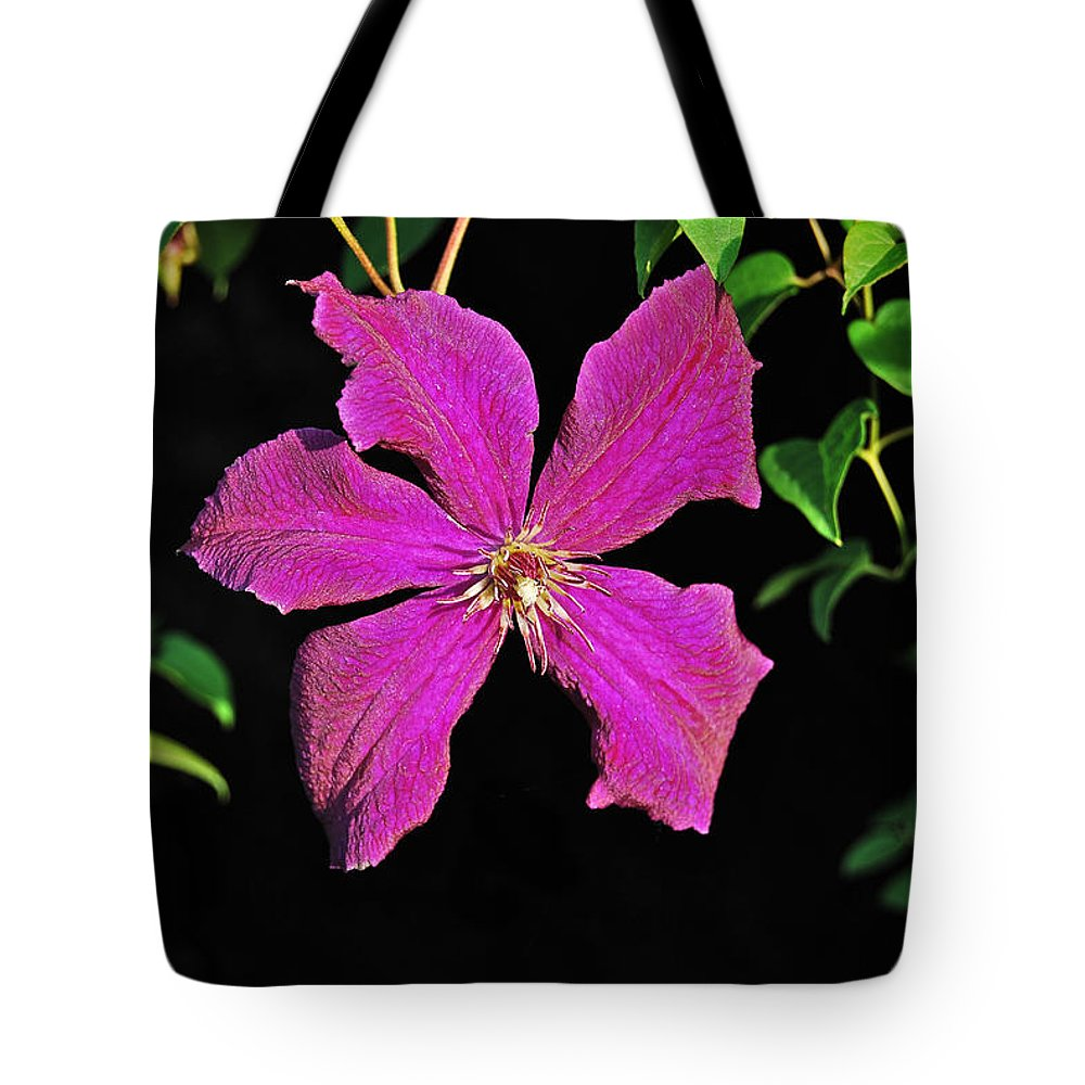 Clematis Tote Bag featuring the photograph Clematis 2598 by Michael Peychich