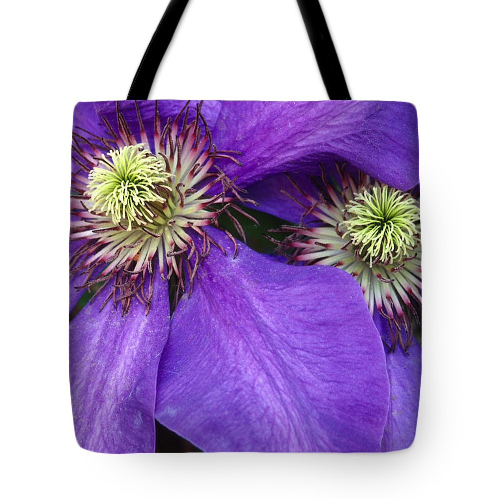 Flowers Tote Bag featuring the photograph Clematis Detail by Sandra Bronstein