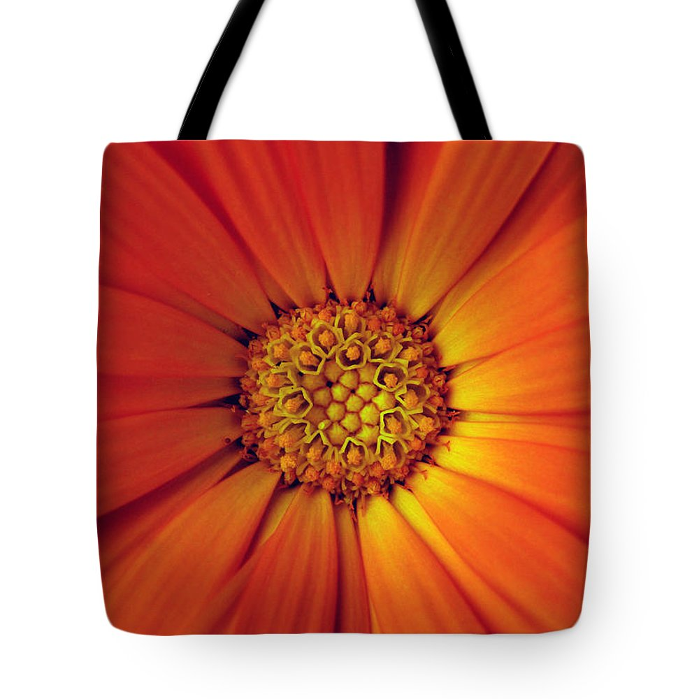 Plant Tote Bag featuring the photograph Close Up Of An Orange Daisy by Ralph A Ledergerber-Photography