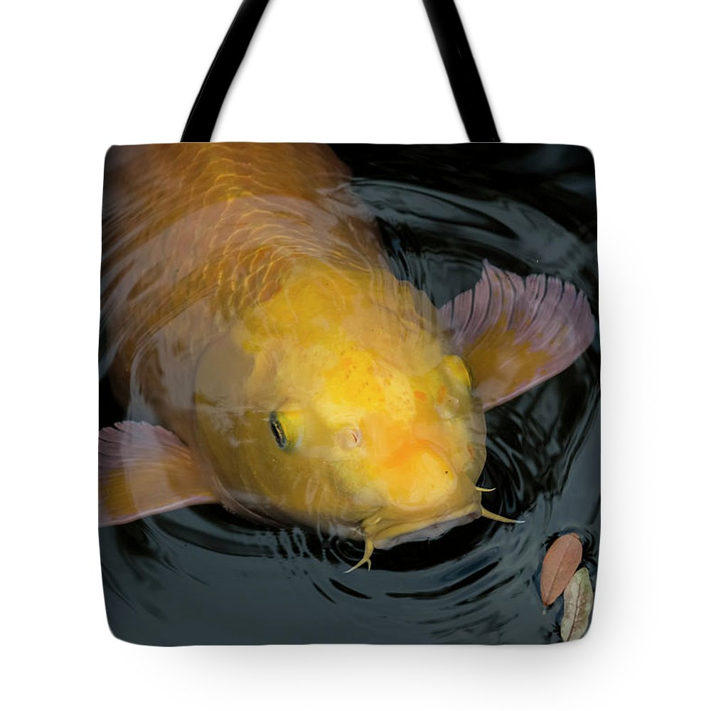 Fish Tote Bag featuring the photograph Close Up Of Single Large Yellow Koi Fish With Whiskers by Sharon Minish