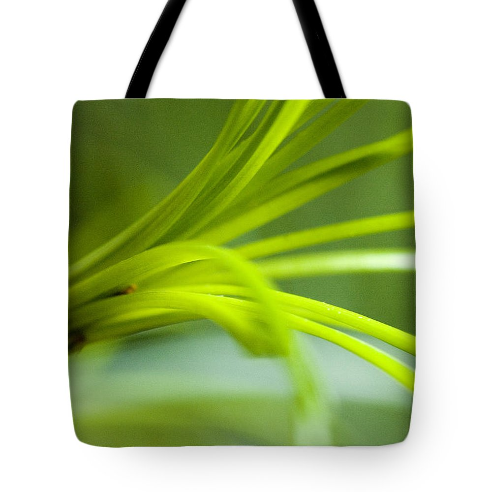 Flowers Tote Bag featuring the photograph Close View Of Green Flower by Todd Gipstein