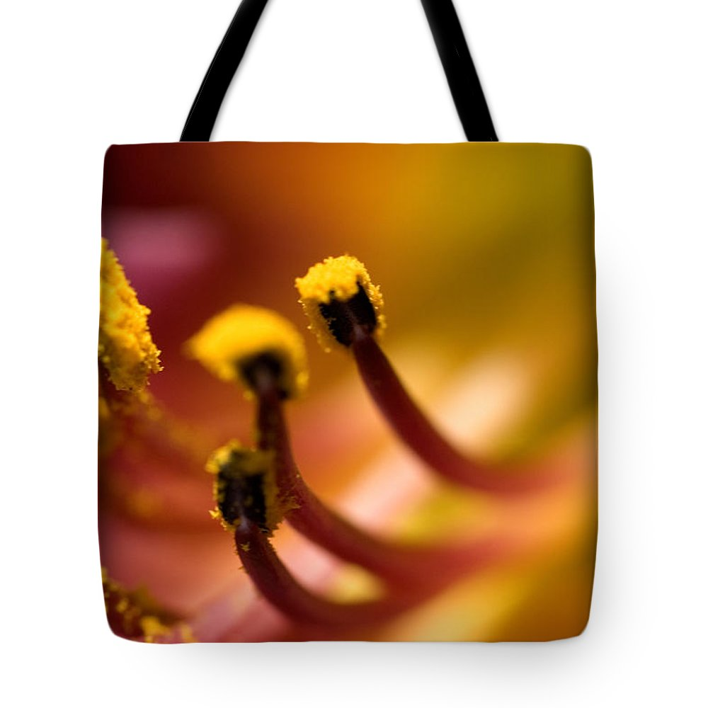 Photography Tote Bag featuring the photograph Close View Of The Stamen Of A Flower by Todd Gipstein