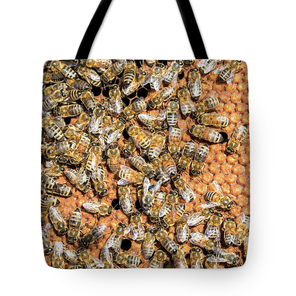 Bee Tote Bag featuring the photograph Closeup of Bees by Jess Kraft