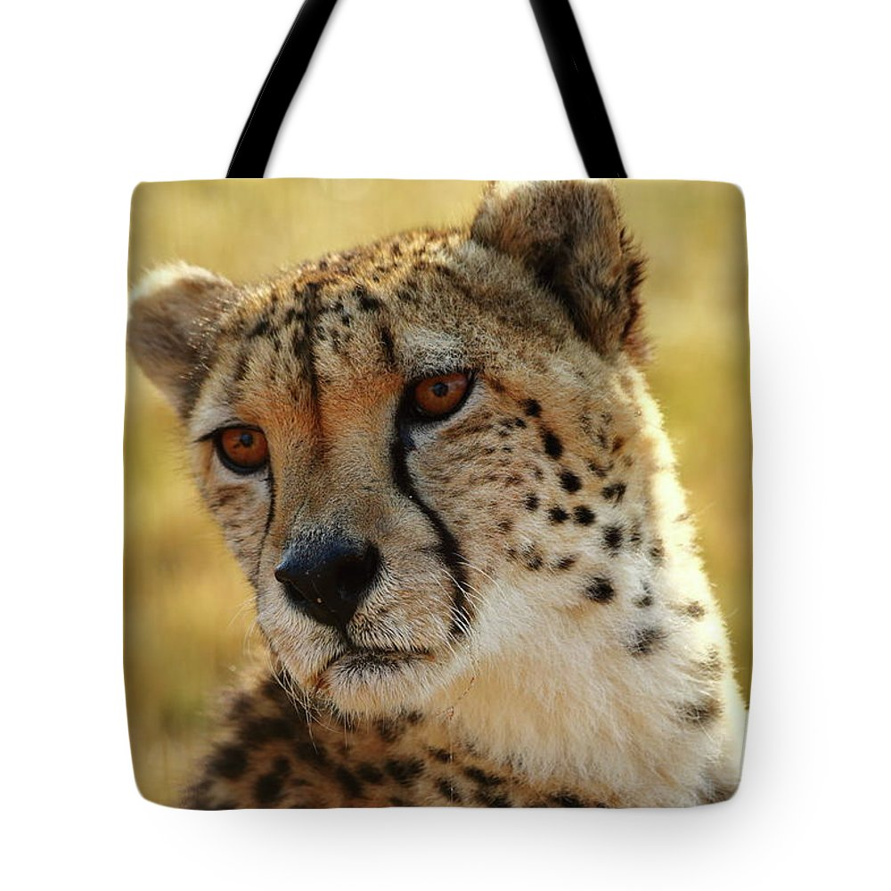 Cheetah Tote Bag featuring the photograph Closeup Of Cheetah by Wesley Lazarus