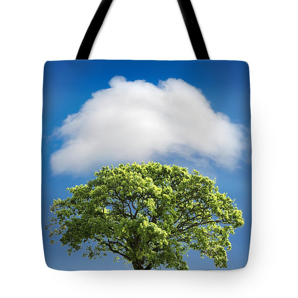 Tree Tote Bag featuring the photograph Cloud Cover by Mal Bray