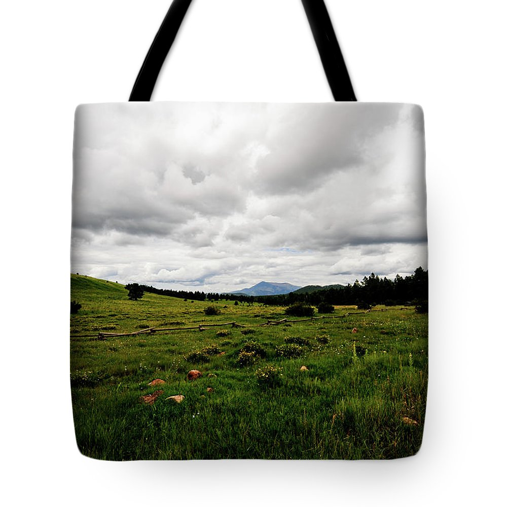 Flowers Tote Bag featuring the photograph Cloudy Meadow by Scott Sawyer
