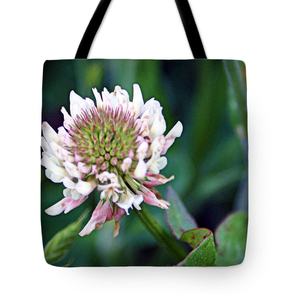 Clover Tote Bag featuring the photograph Clover Blossom by Cricket Hackmann
