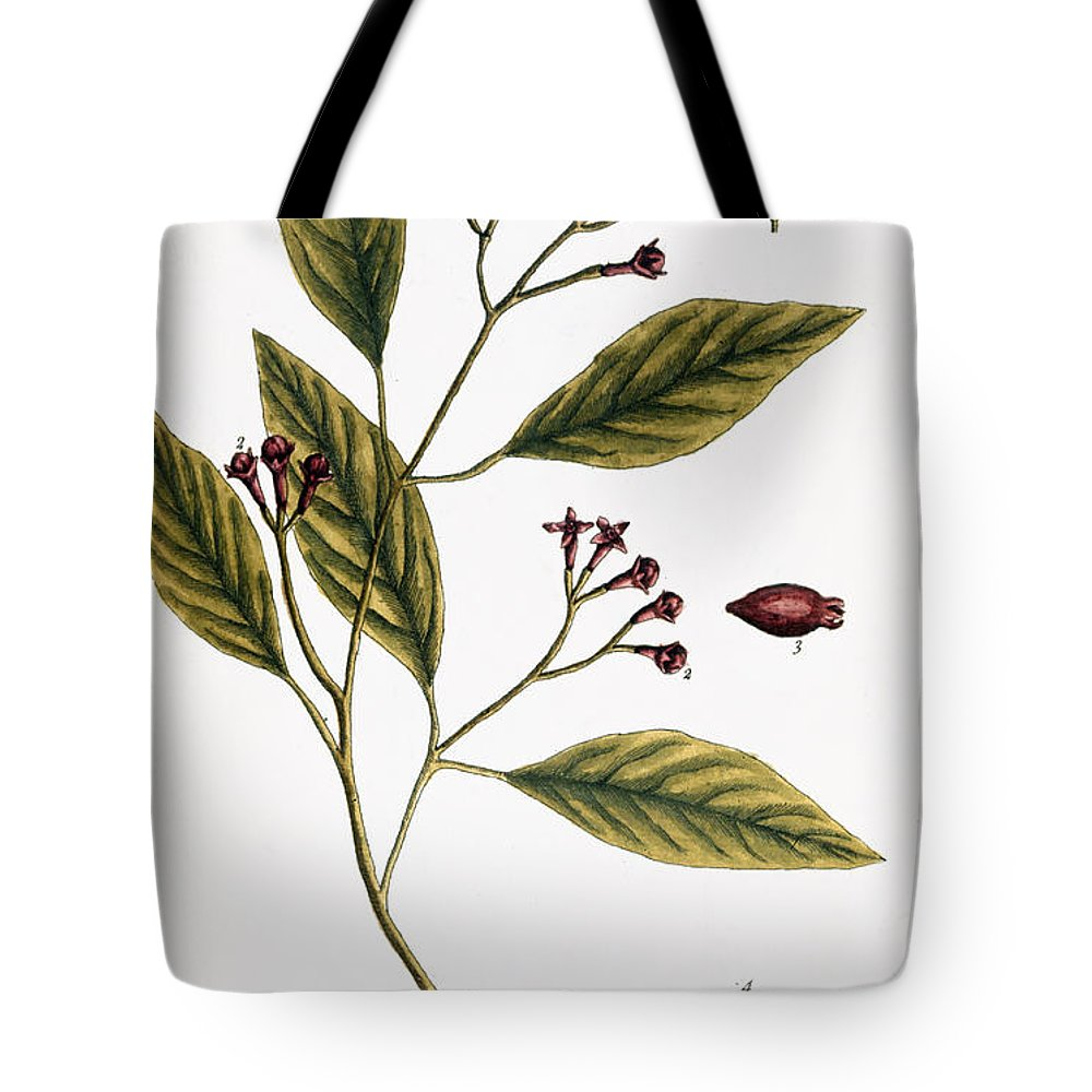 1730s Tote Bag featuring the photograph Cloves, 1735 by Granger