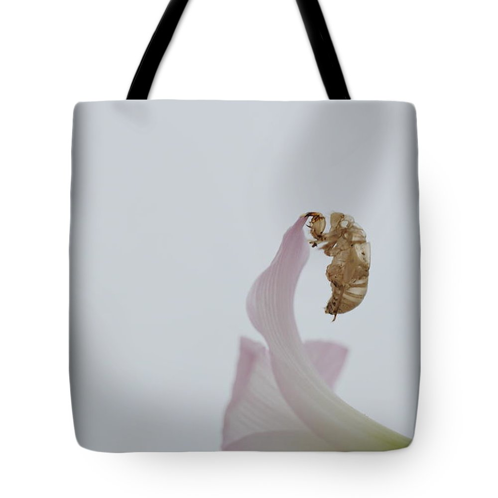 Cicada Shell Insect Exoskeleton Nature Flower Hanging Shed Skin New Life Petals Tote Bag featuring the photograph Clutch by Mandy Shupp
