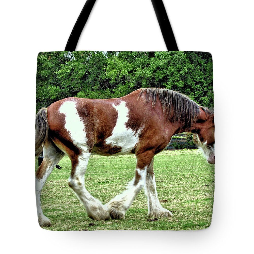 Animal Tote Bag featuring the photograph Clydesdale by John Trommer