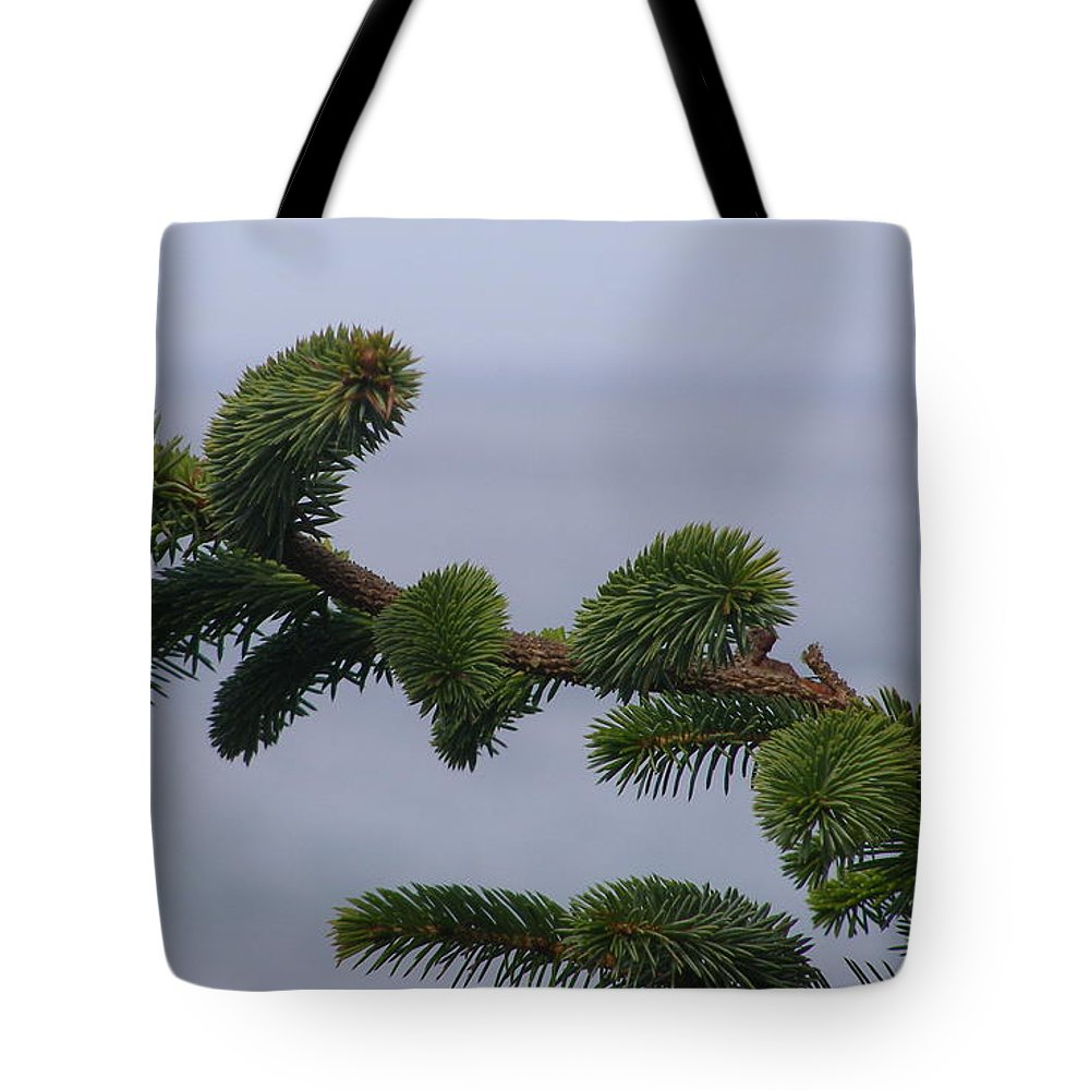 Evergreen Tote Bag featuring the photograph Coastal Living by Larry Lacy