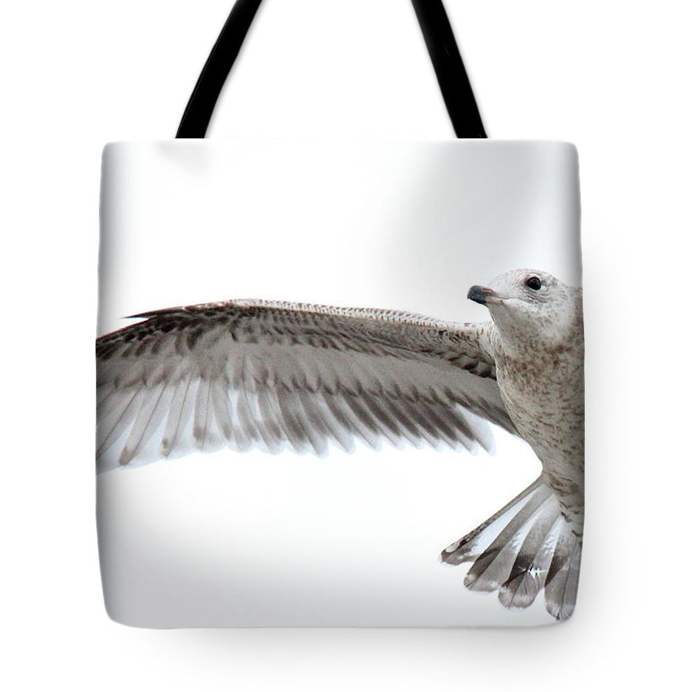 Coasting Tote Bag featuring the photograph Coasting by Ed Smith