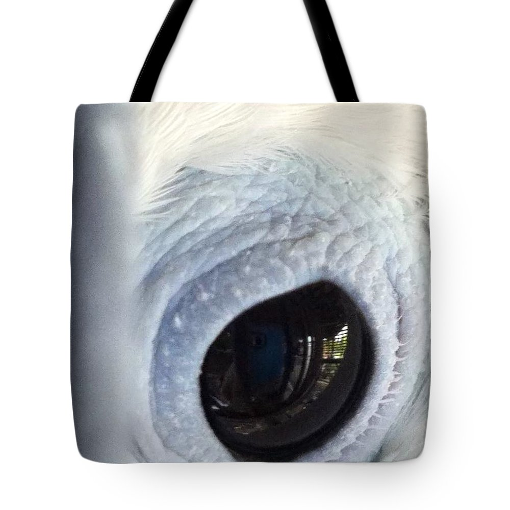 Tote Bag featuring the photograph Cockatiel Eye by Teresa Doran