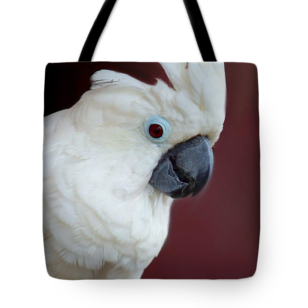 Cockatoo Tote Bag featuring the photograph Cockatoo Portrait by Jai Johnson