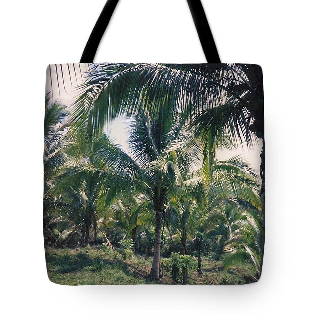 Jamaica Tote Bag featuring the photograph Coconut Farm by Debbie Levene