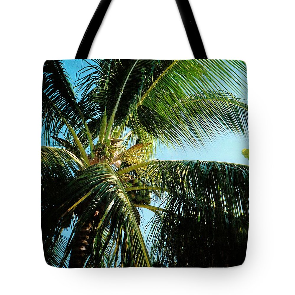Jamaica Tote Bag featuring the photograph Coconut Tree by Debbie Levene