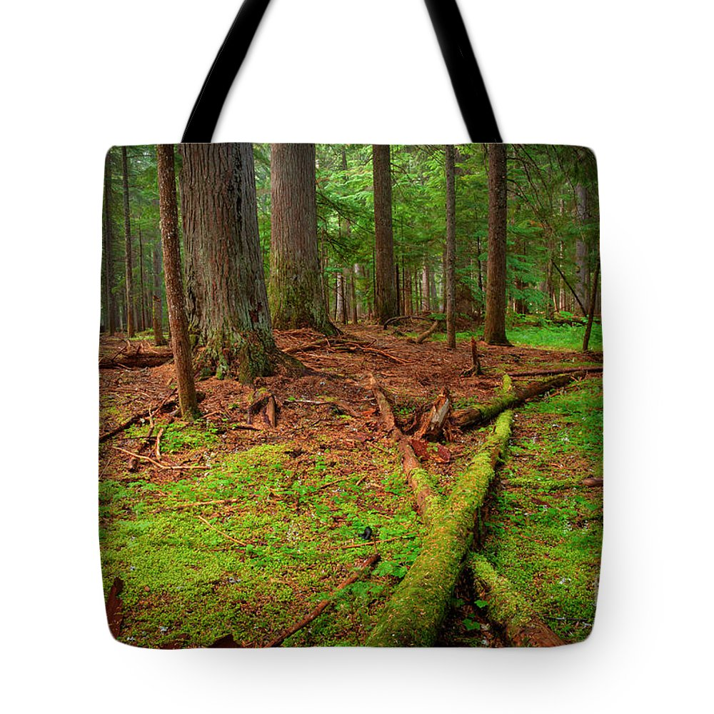 Green Tote Bag featuring the photograph Coeur D'alene Forest by Idaho Scenic Images Linda Lantzy