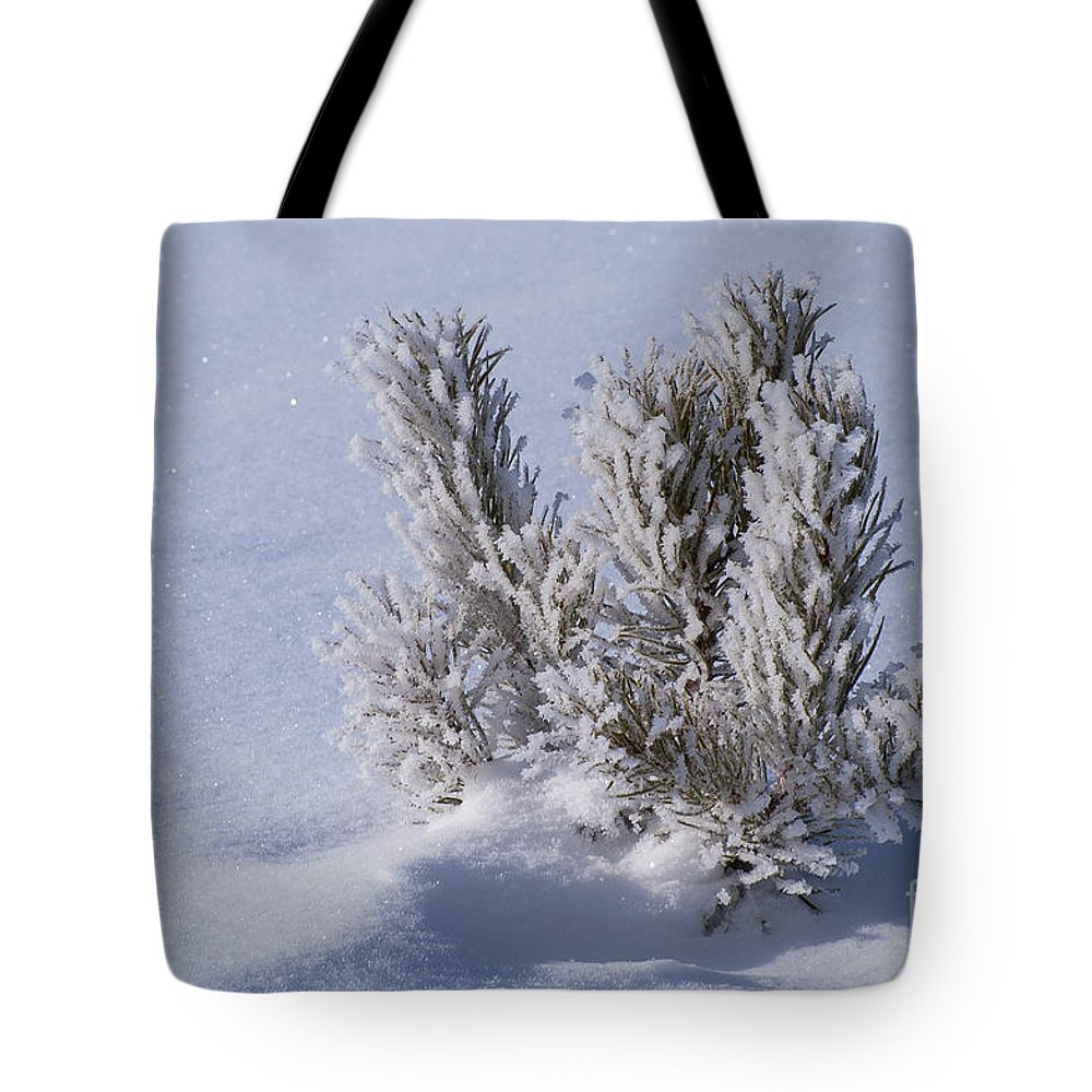Yellowstone National Park Tote Bag featuring the photograph Cold And Lonely by Bob Phillips