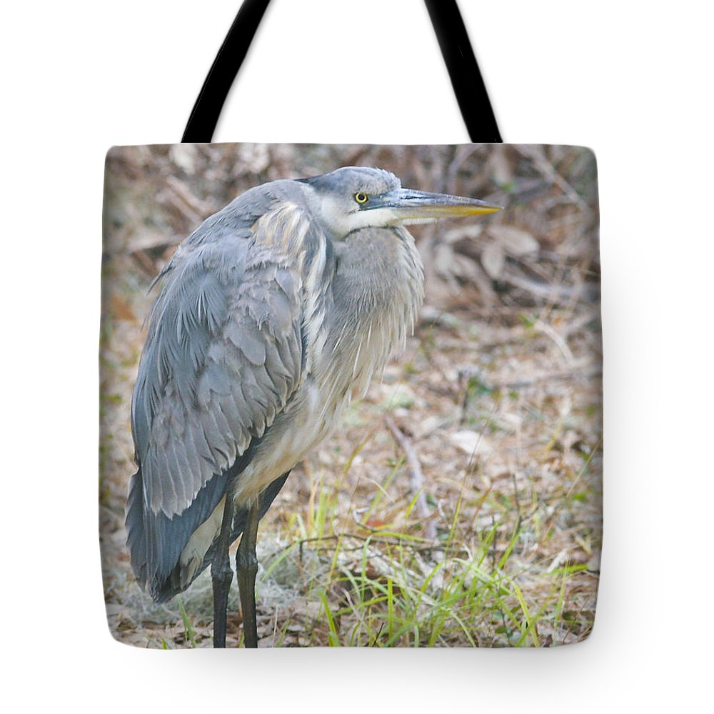 Bird Tote Bag featuring the photograph Cold Blue Heron by Phill Doherty