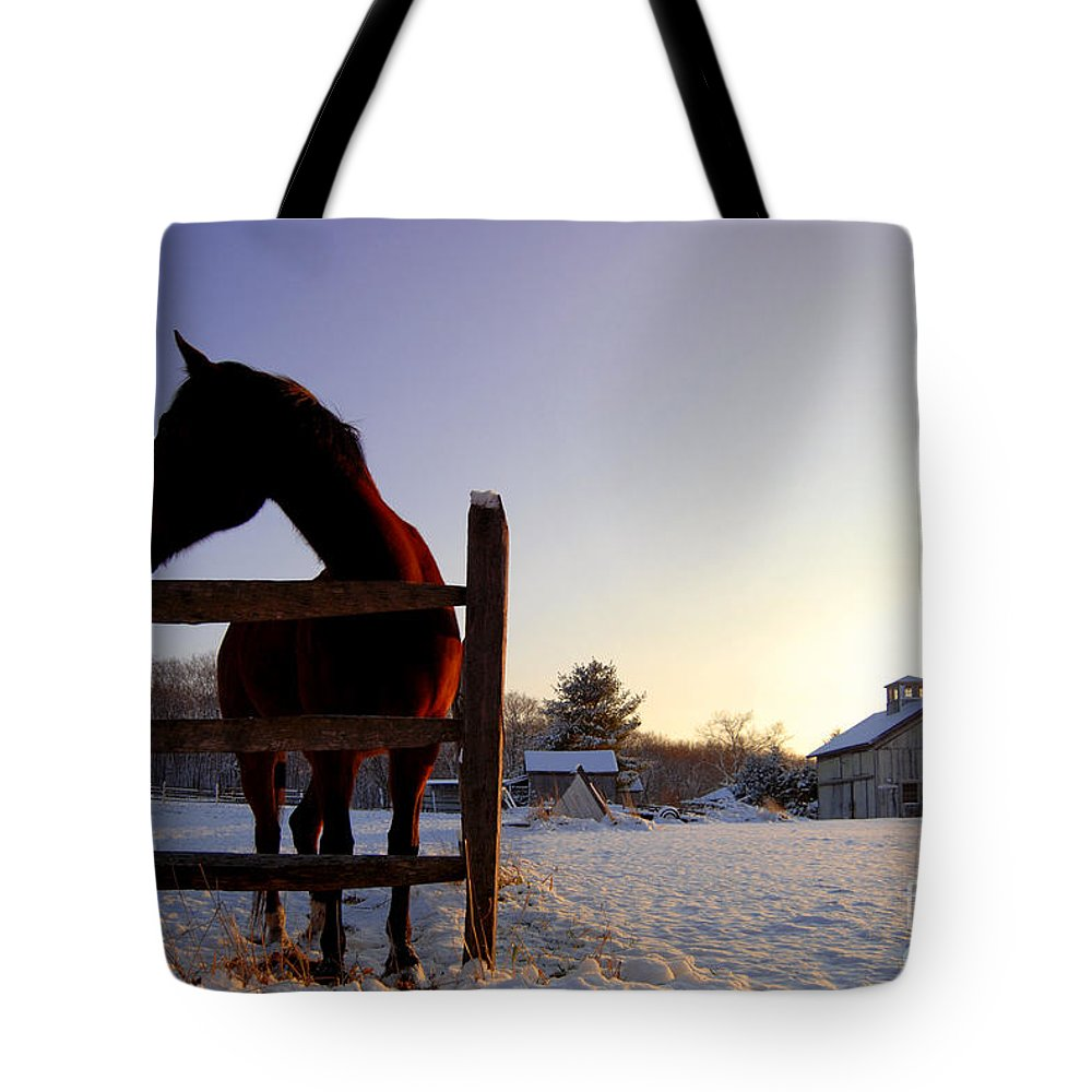 New England Tote Bag featuring the photograph Cold Morning by Sabine Jacobs