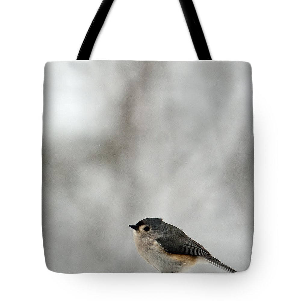 Cold Tote Bag featuring the photograph Cold Titmouse by Douglas Barnett