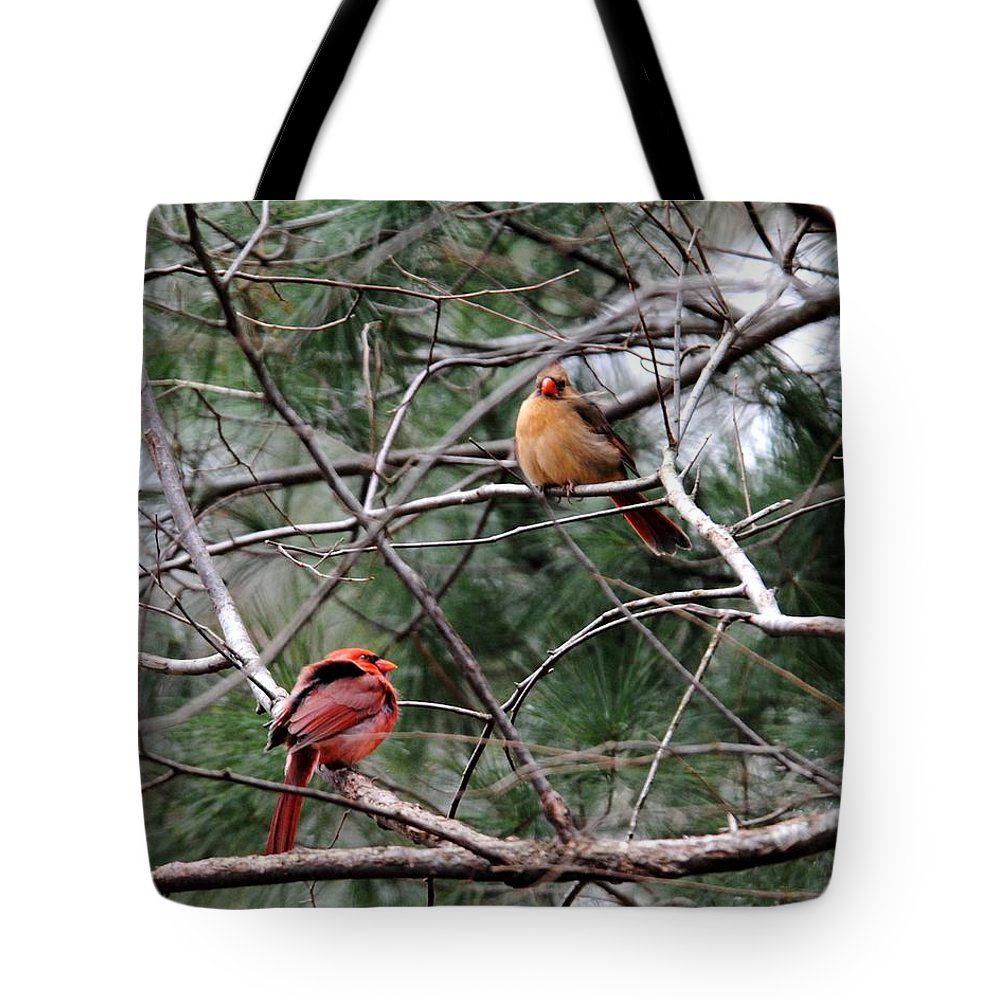 Cardinal Tote Bag featuring the photograph Cold Winter Day by Jai Johnson