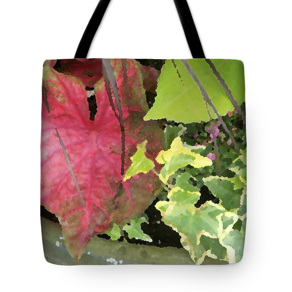 Coleus Tote Bag featuring the photograph Coleus And Ivy by Jean Macaluso