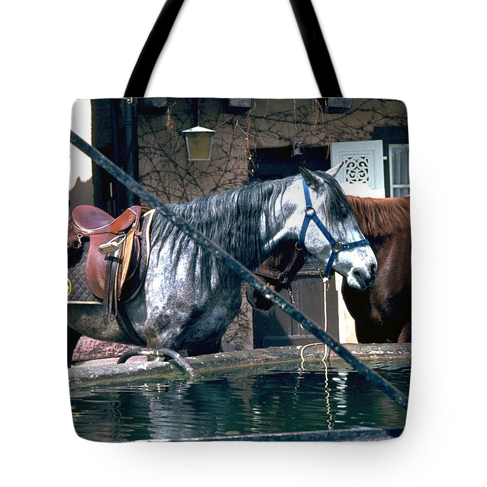 Colmar Tote Bag featuring the photograph Colmar II by Flavia Westerwelle