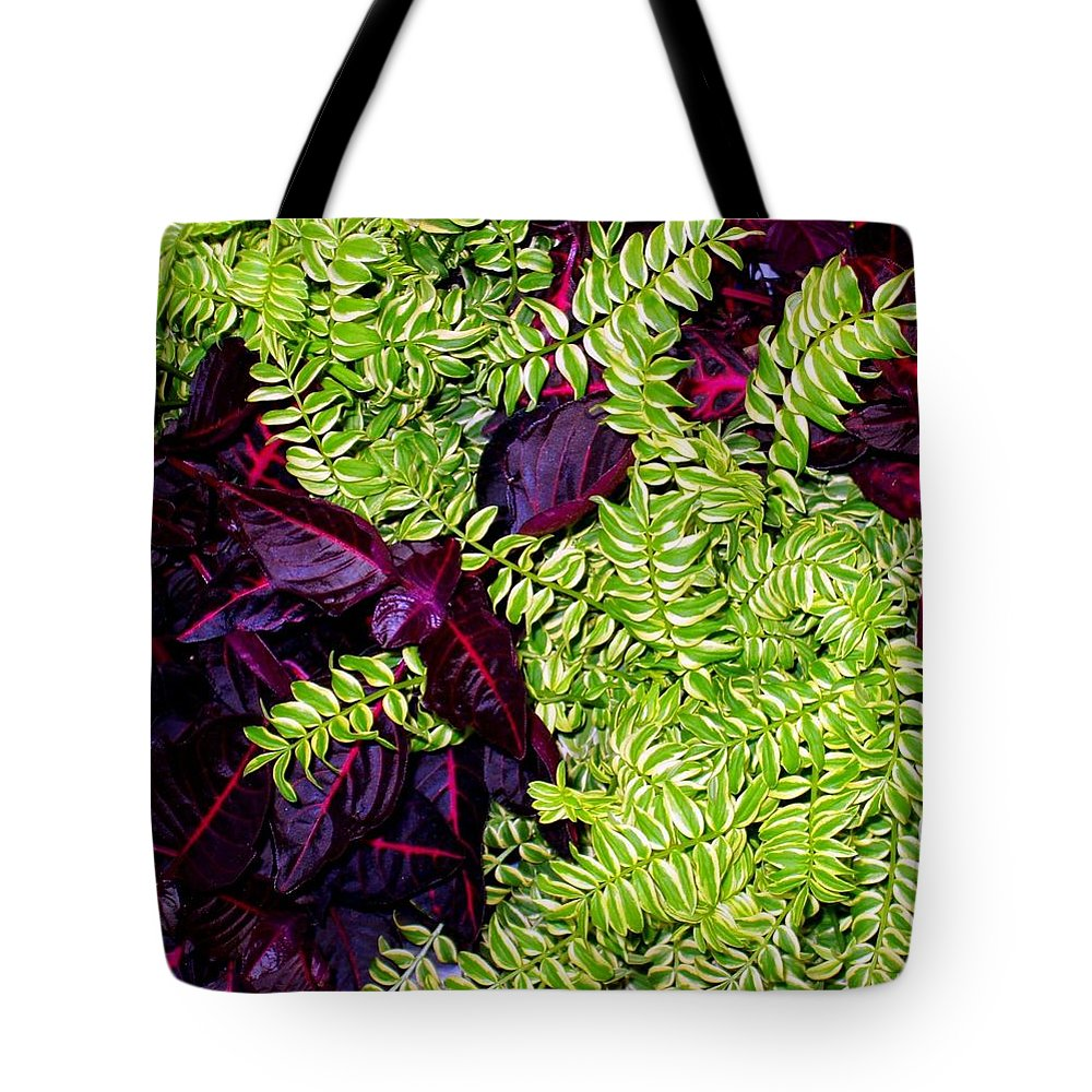 Plants Tote Bag featuring the photograph Color Combo by Deborah Crew-Johnson