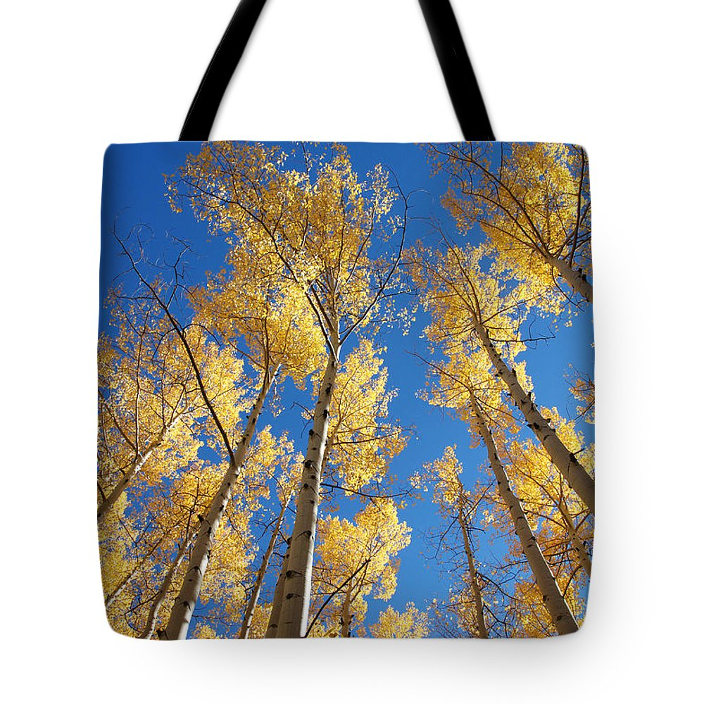 Aspen Tote Bag featuring the photograph Colorado Aspen by Jerry McElroy