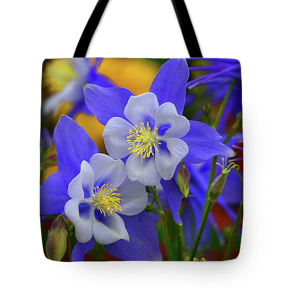 Columbine Tote Bag featuring the photograph Colorado Columbine by Lynn Bauer