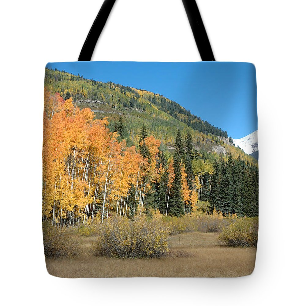 Aspen Tote Bag featuring the photograph Colorado Gold by Jerry McElroy