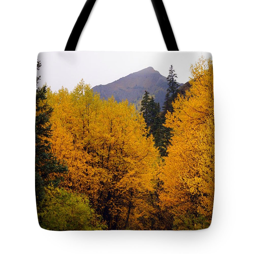 Fall Colors Tote Bag featuring the photograph Colorado Road by Marty Koch