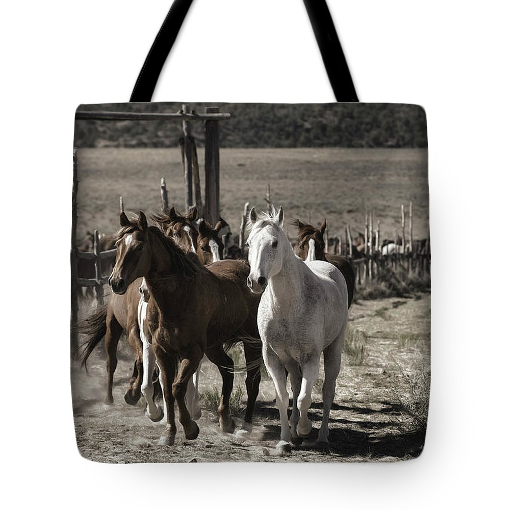 Horses Tote Bag featuring the photograph Colorado Run by Pamela Steege