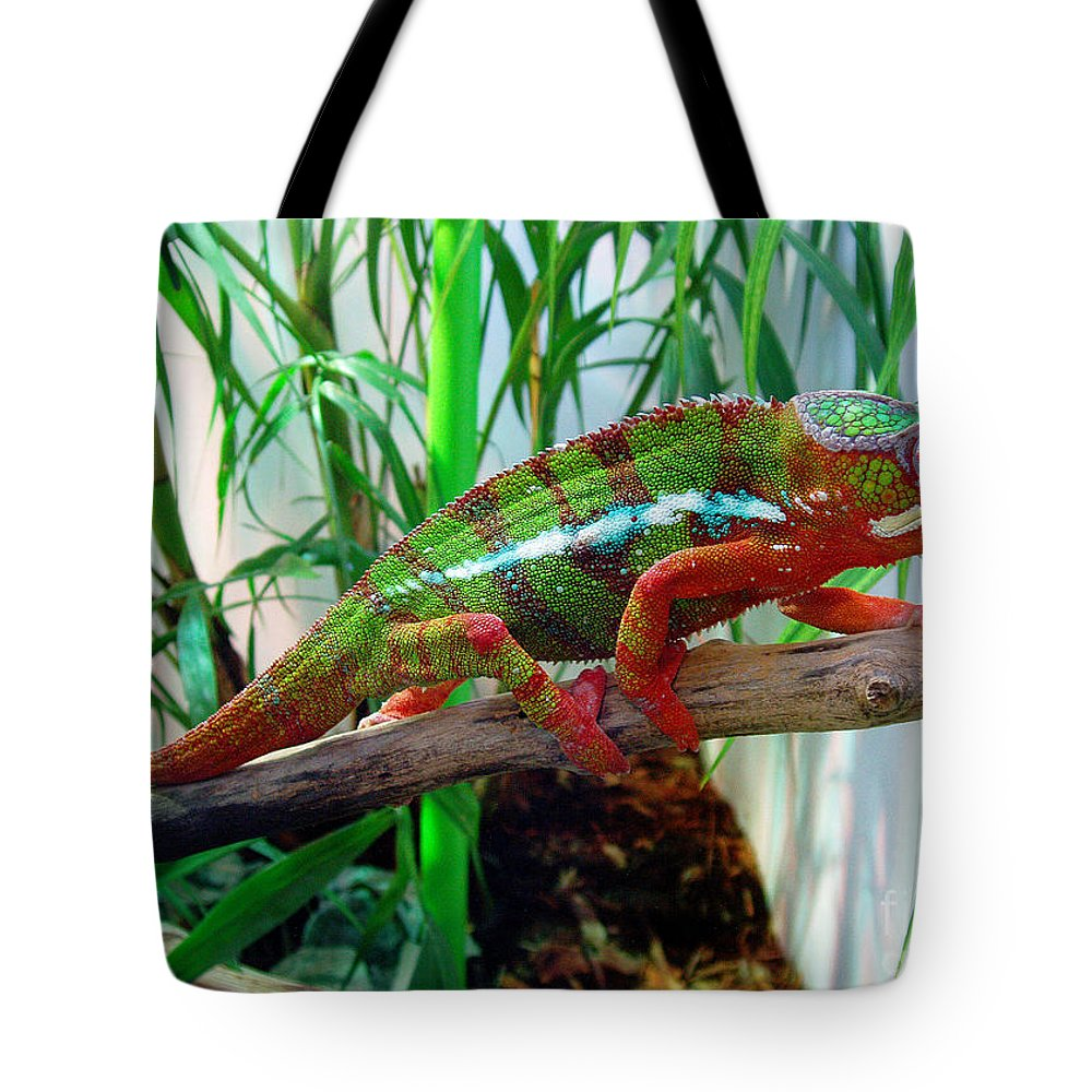 Chameleon Tote Bag featuring the photograph Colorful Chameleon by Nancy Mueller